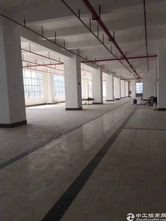 布吉李朗全新厂房47000平米