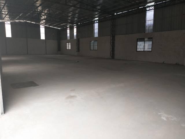 独栋钢构厂房出租