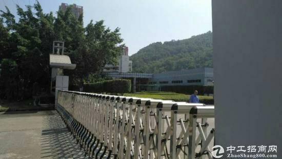 惠州陈江花园式工业园一楼厂房2600平方招租