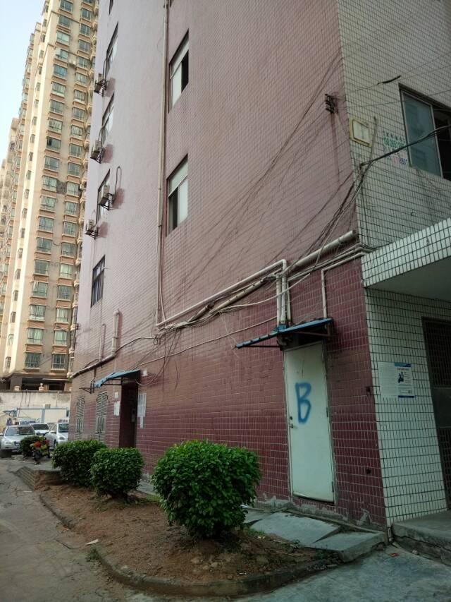 龙华清湖新出厂房500平方带有装修