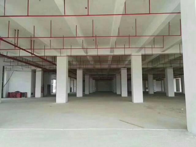 龙溪镇新出厂房1800平租金11元