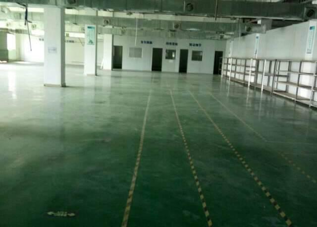 观澜大型工业园区原房东标准厂房三楼一整层出租1400平米。