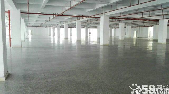 原房东直租平湖华南城附近1-2楼3000平方标准厂房