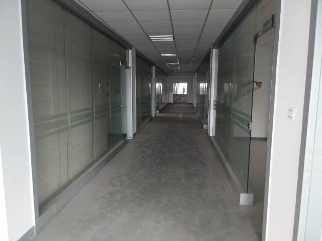 凤岗镇金凤凰空出一栋办公楼2500平方