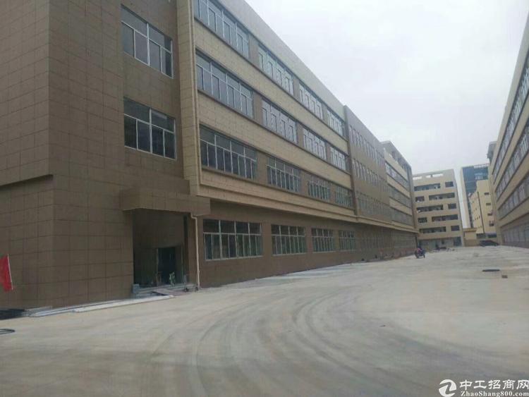 寮步新出厂房分租一楼3000方,靠近主干道 形象好气质佳