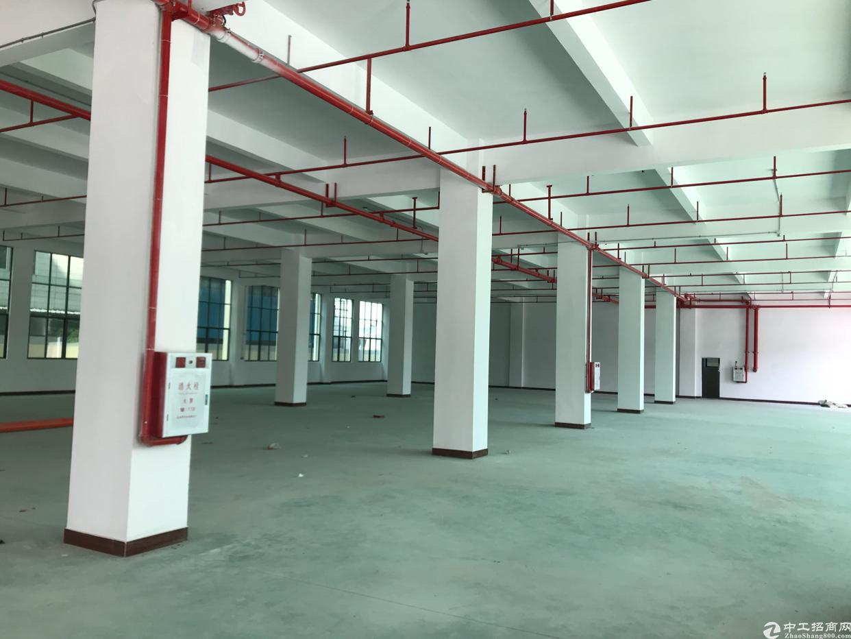 新建独院标准厂房分租