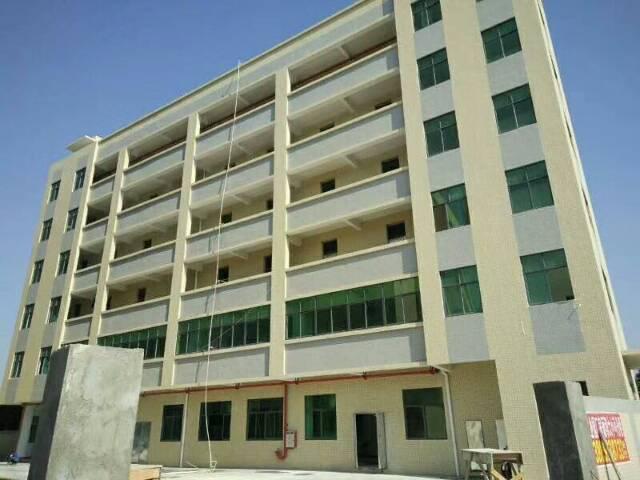 石排全新标准厂房,厂房及宿舍总面积13000平方