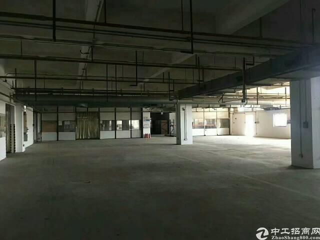 平湖大型物流园6万平米招租!四周有卸货平台!