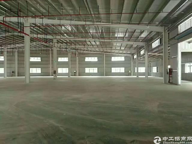 惠州 新圩原房东2300平方带喷油烤漆证件单一层钢构出租!-图3