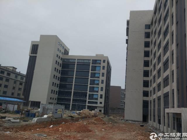 惠阳经济开发区在建厂房32000平(可分租)