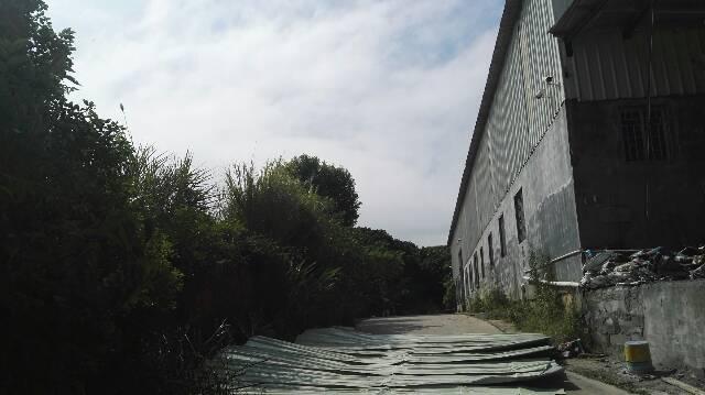 靠近山边钢构厂房