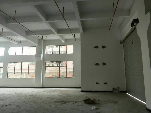 黄江镇独院钢结构厂房