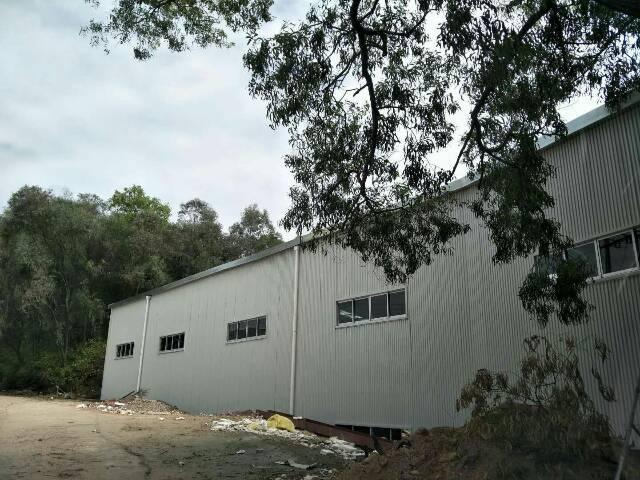 谢岗原房东独栋新建钢构2600平方,电200