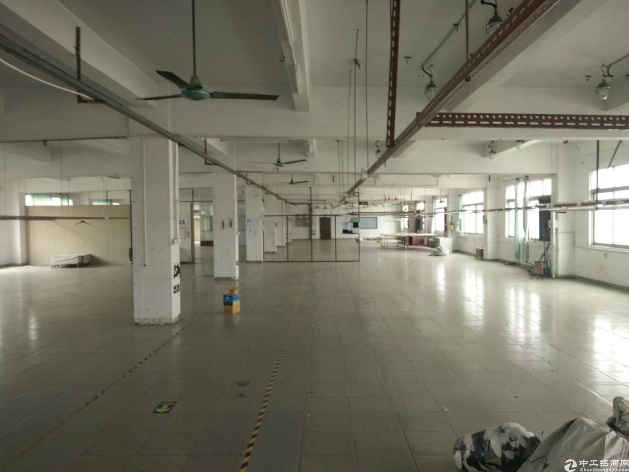 新出原房东独院2楼1500平米