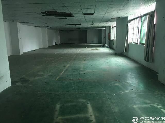 坂田五和精装办公室厂房出租200平方起租