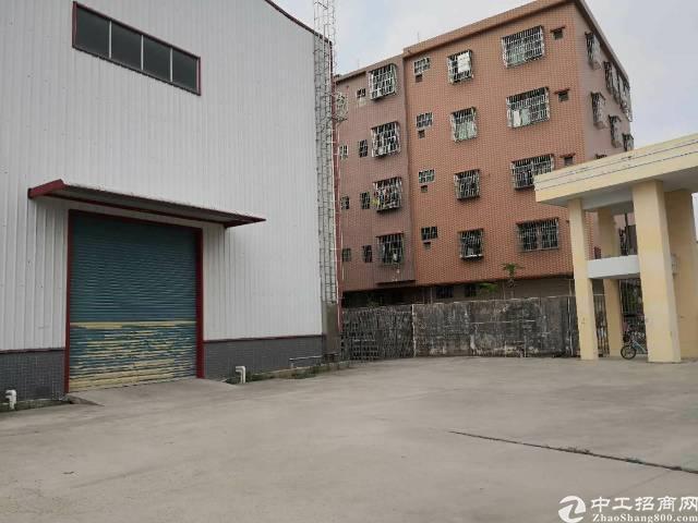 企石镇独栋钢构单一层厂房4300平方滴水10米