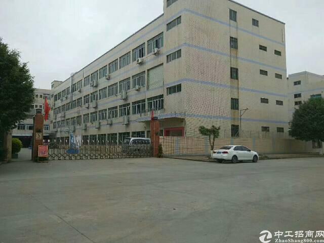 独院厂房出租8500平方/4层 一楼6米高