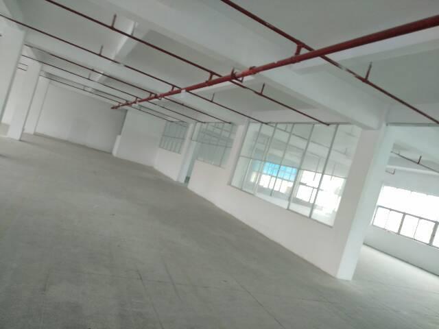 大岭山新出标准厂房和钢构