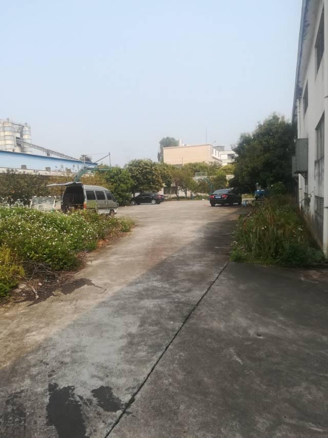 大岭山经典独院单一层2500平方厂房出租
