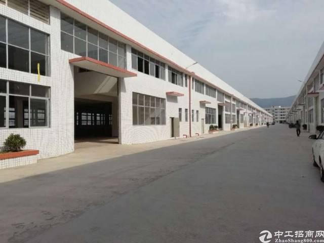 大朗镇靠松山湖新出砖墙到顶独院钢构厂房:单一层4500平方