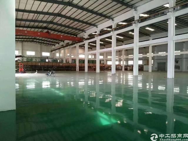 茶山镇单一层独院厂房3500招租