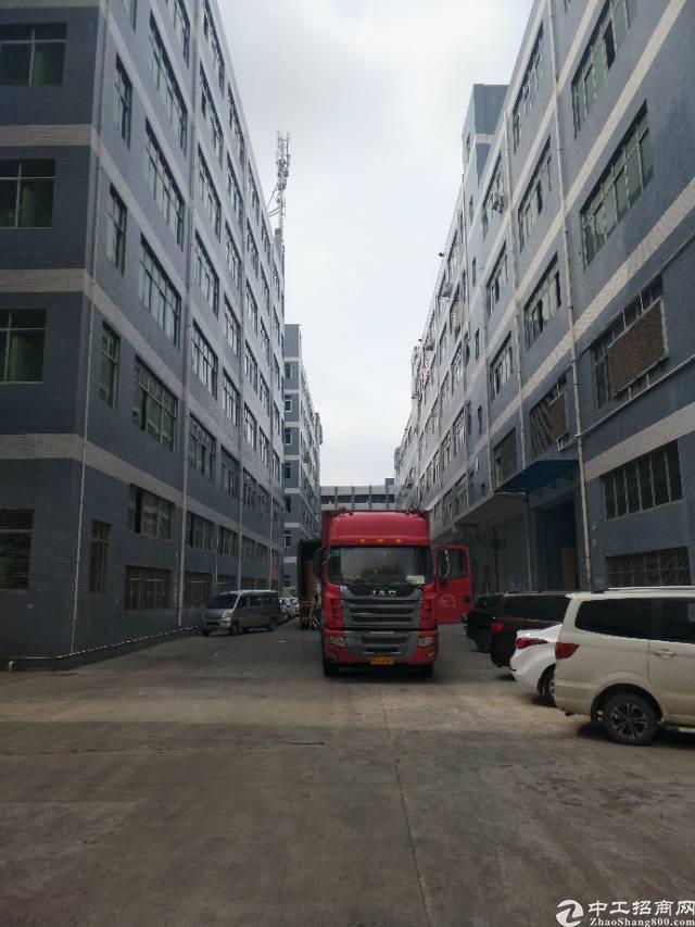 凤岗镇黄洞新空出精装修厂房1750平方