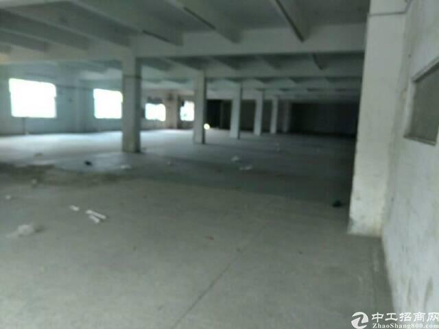 平湖清平高速出口附近一楼1200平方标准厂房出租
