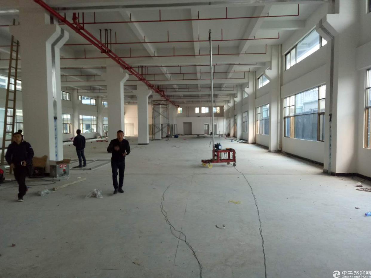 东莞市全新标准厂房一楼出租2000平方,可分租,高6米