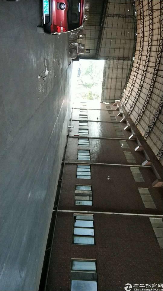 东莞道滘纸厂改造厂房分租小到500平方大到3万平方