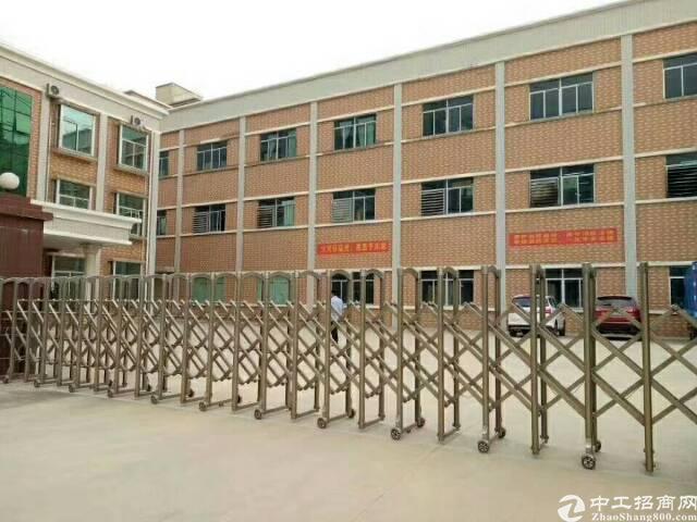 锦厦新出精装修厂房560平方低价出租