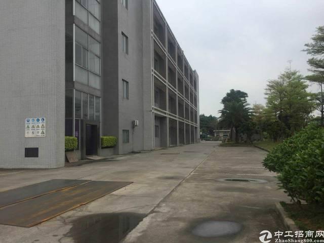 松山湖花园式红本厂房分租