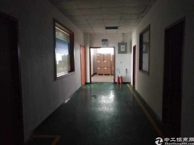 龙岗坪地主干道边精装修办公室500平米低价出租
