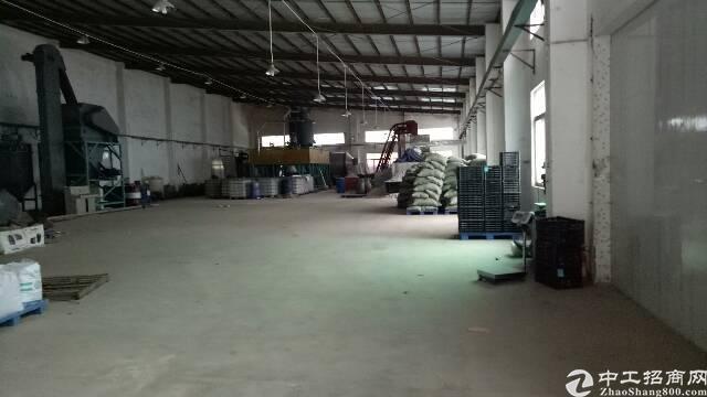 坑梓秀新工业区一楼钢构厂房1200平方招租,电量超大
