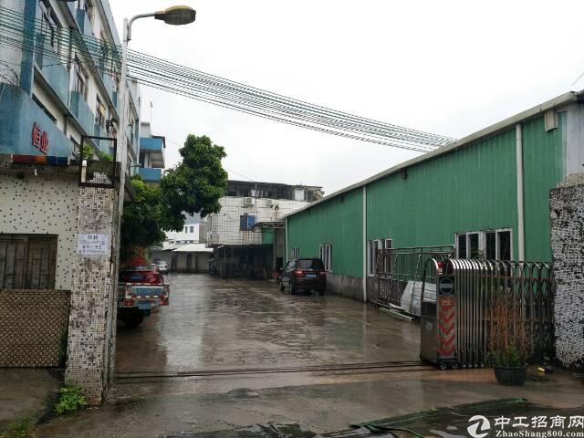 茶山镇6000平米单一层独院厂房出租