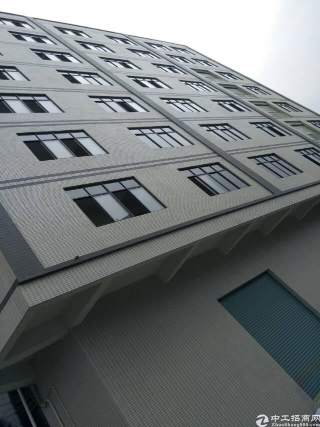 大岭山新出楼盘/厂房,位置便利,形象优越,物美价廉。