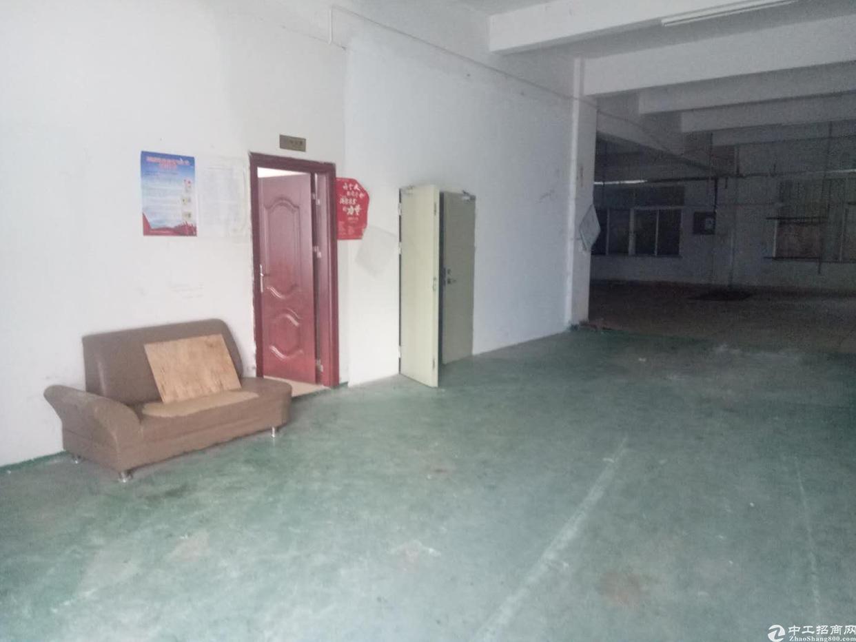 沙田比亚迪附近标准一楼550平方出租