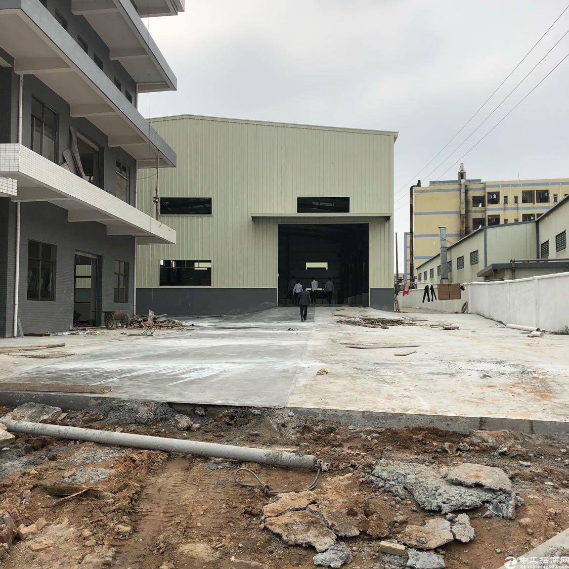 企石镇全新独院钢构厂房