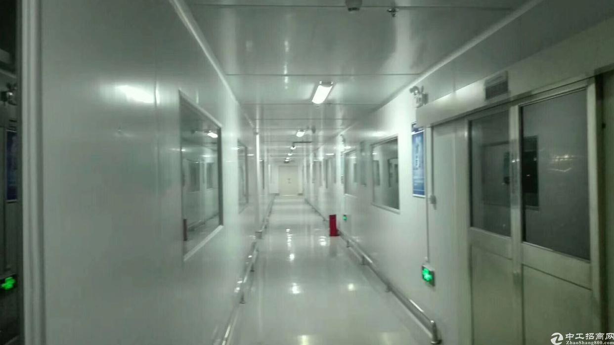 沙田镇新出二楼4800平无尘车间转让,现成豪华办公室装修