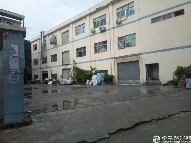 常平镇元江元附近新出标准厂房出租1楼800平方欢迎老板来电