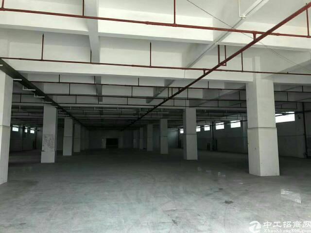 大岭山新出楼上带消防喷淋厂房1600平米低价出租
