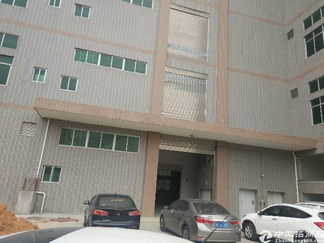 虎门新建电镀厂房单层2200平