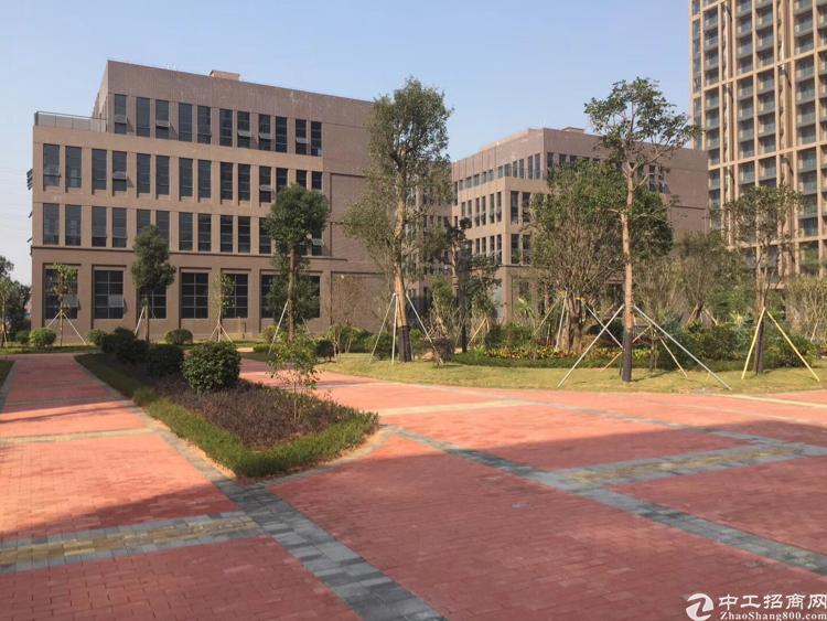 宝安松岗高新科技园全新研发楼独栋厂房开发商直租