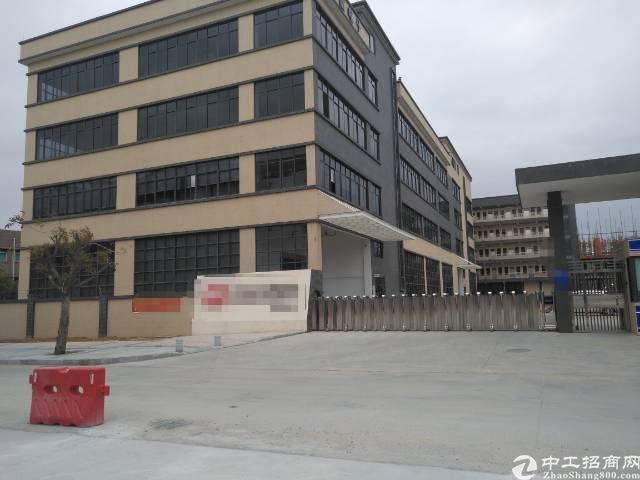 横沥东部快速出口一手房东厂房10000平米招租