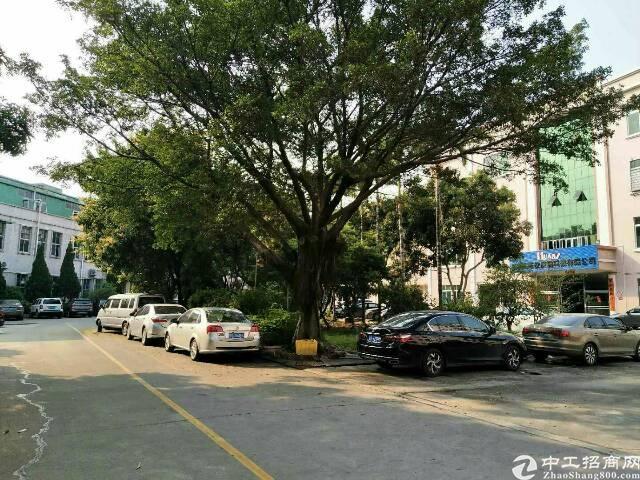 东城独门独院20000方