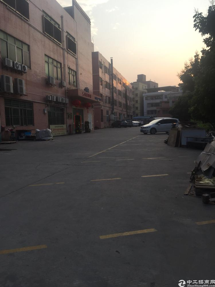 华南城附近标准厂房出租