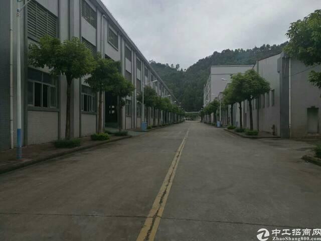 新出10米高带牛角单一层厂房3500平米,