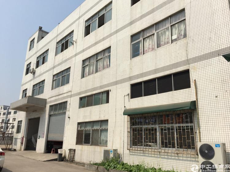 宝屯村现成水电齐全带装修办公室厂房1500平方米5.5米高度