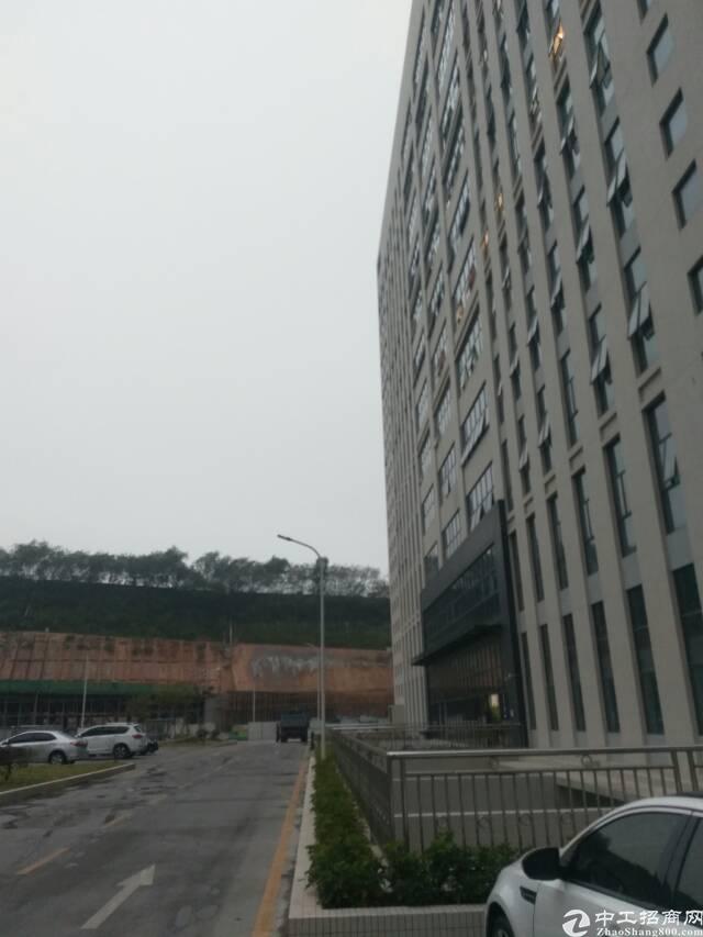 光明高新区龙大高速出口新出红厂房4600平方
