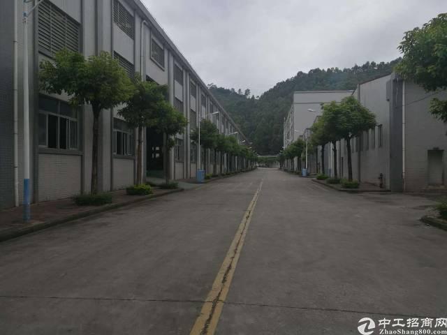 大岭山镇百花洞村现有实际面积3100平方厂房出租