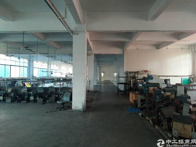 谢岗原房东楼上带有水电办公室装修厂房